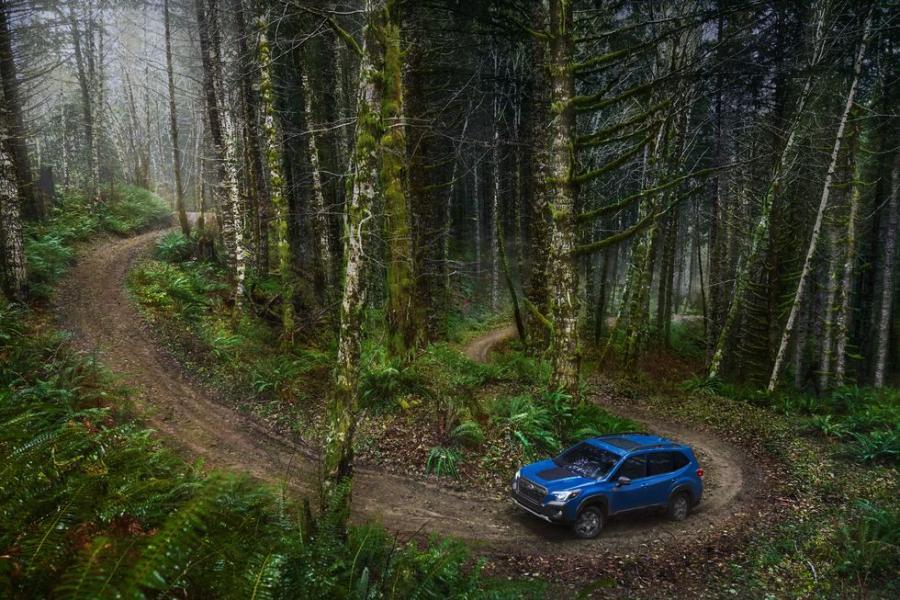 2022-subaru-forester-wilderness-2