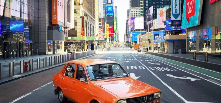 dacia 1300, dacia en estados unidos, dacia 1300 en estados unidos, dacia 1300 en nueva york, dacia 1300 new york, renault usa, renault en usa, renault en estados unidos, renault 12 en estados unidos, renault 12 usa, dacia 1300 usa, dacia 1300 caracteristicas, dacia 1300 colombia, dacia 1300 taxi, dacia 1300 historia, historia de dacia, dacia renault